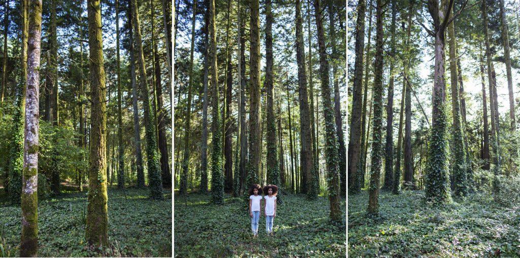 Mónica de Miranda, Twins (da série Linetrap), 2014-impressão digital, 150x300. Courtesy of Carlos Carvalho Art Contemporânea.