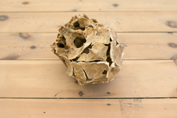 Ariel Schlesinger, Untitled (Inside Out Skull), 2014, Skull, glue 15 x 20 x 17 cm, Unique. Courtesy of Dvir Gallery.
