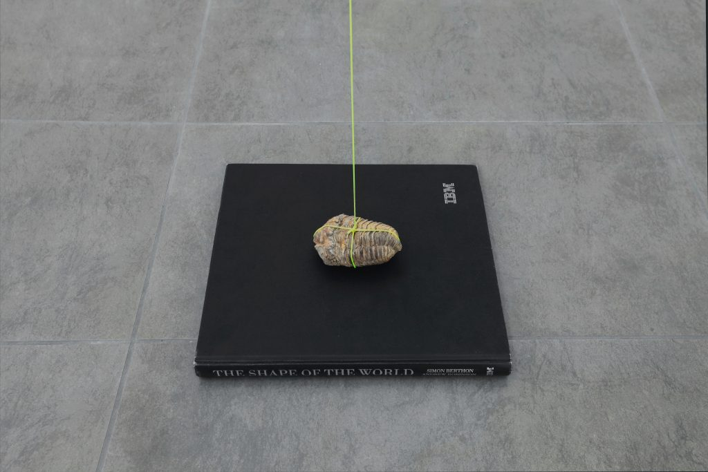 Nicolás Lamas 'The Shape of the World' (2016) Book, fossil, string Variable dimensions. Courtesy of Brand New Gallery.