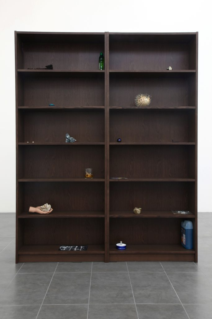 Nicolás Lamas Anarchive I (2016) Bookcase, objects and images cm. 202x160x28 (in. 79 1/2x63 x11). Courtesy of Brand New Gallery.