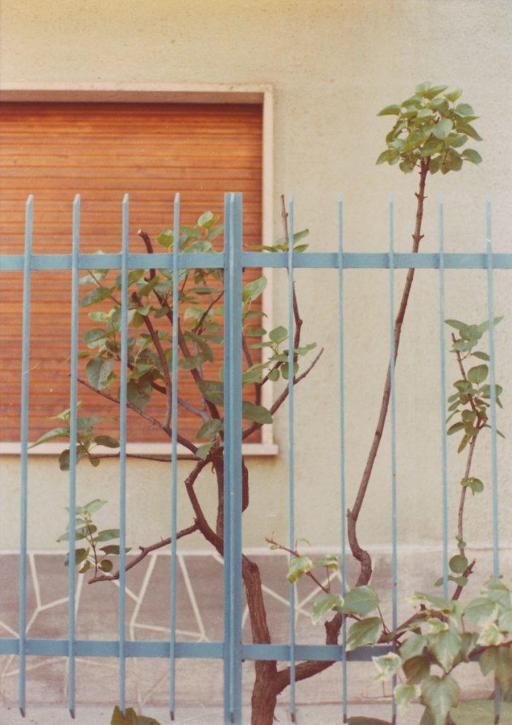 Luigi Ghirri, Modena (Serie: Colazione sull'erba), 1973 c-print, vintage image 17.5 x 12.3 cm,  framed 34 x 29 x 3 cm. Courtesy of Mai 36 Galerie, Zürich.