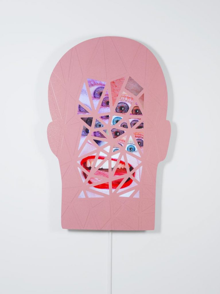 Tony Oursler, FFish, 2015 Photo: Courtesy the artist and Bernier/Eliades Gallery. Photo: Boris Kirpotin.