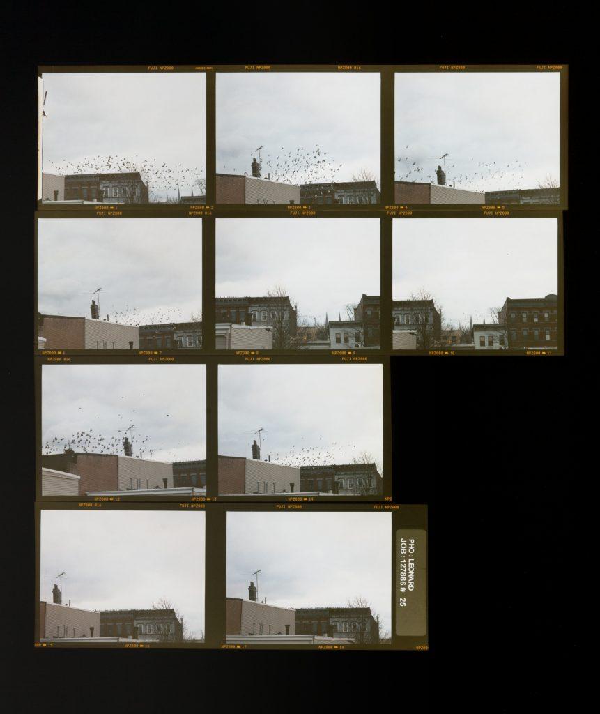 Zoe Leonard  Roll #25 2006/16 C-print 55.9 x 47 cm / 22 x 18 1/2 in. © The artist Courtesy Hauser & Wirth