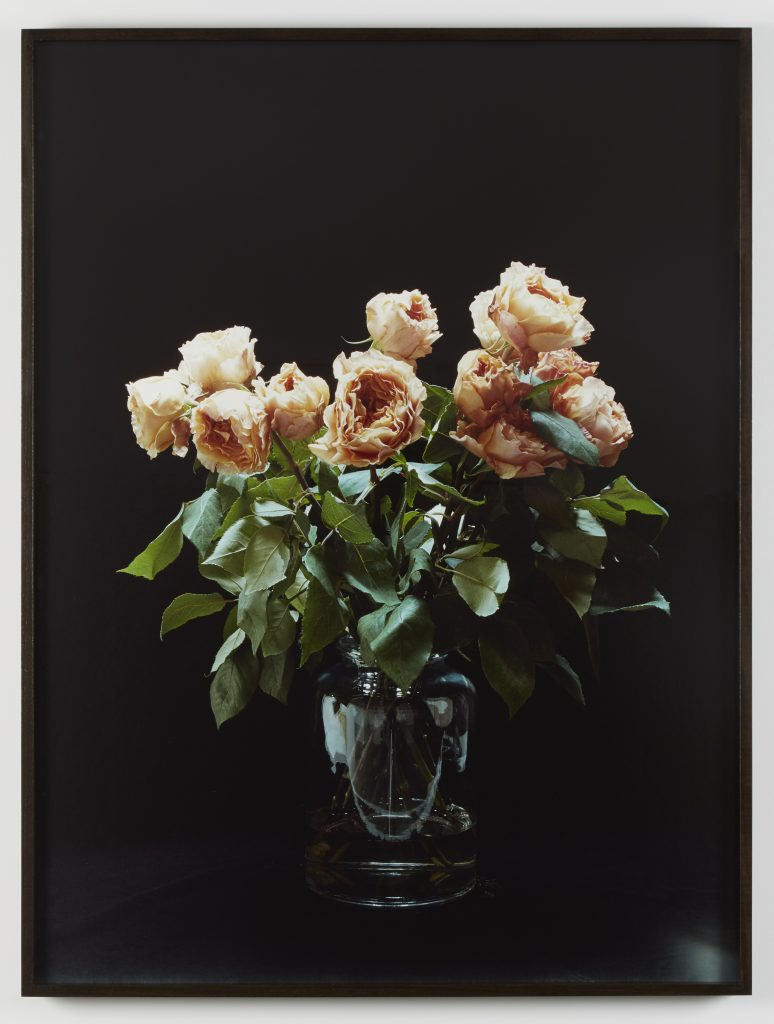 Melanie Schiff, 'Black, Roses', 2016 Pigmented inkjet print 40 3/4 x 30 3/4 x 2 inches (framed). Edition 1 of 3 with 2 AP.  Courtesy of the artist and Kate Werble Gallery, New York, NY.