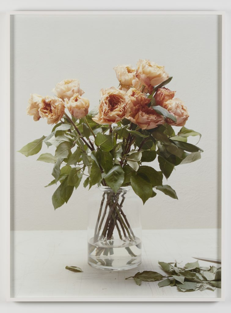Melanie Schiff 'White, Roses', 2016 Pigmented inkjet print 40 3/4 x 30 3/4 x 2 inches (framed). Edition 2 of 3 with 2 AP.  Courtesy of the artist and Kate Werble Gallery, New York, NY.