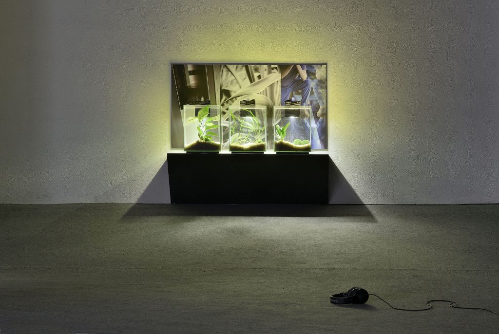 Tris Vonna-Michell 'Wasteful Illuminations: audio poems', 2016 Installation consisting of soundtrack on headphones, three aquariums on a shelf, and archival inkjet print, audio: 10 min. 43 sec. aquarium, each: 31.5 x 25.4 x 25.4 cm, shelf: 35 x 110 cm, print: 59 x 108.3 cm. Courtesy of the Artist and T293. Photo credit: Roberto Apa.